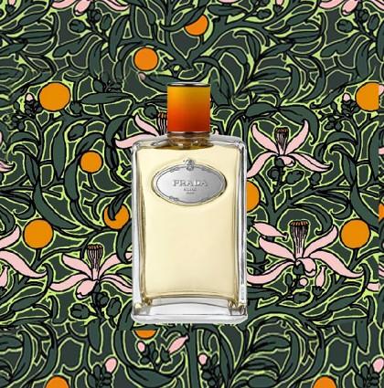 Press Pack <br />Fleur d'Oranger<br /> de Prada