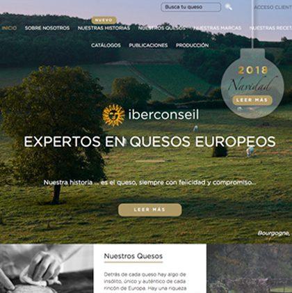 Website Iberconseil