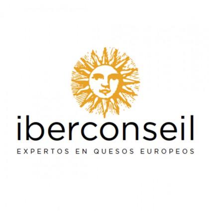 Identidad Corporativa Iberconseil